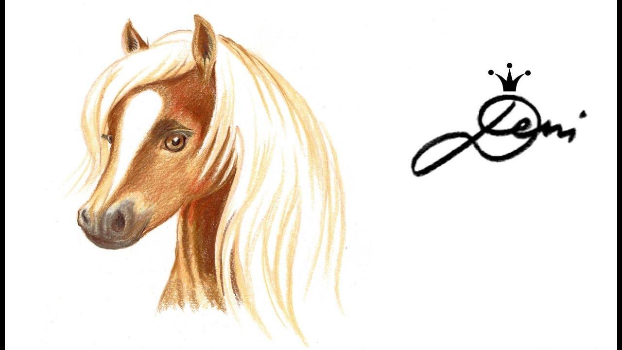 Horse drawing pferd zeichnen pferdekopf malen for Hase malen
