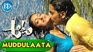 Aata Movie - Muddulaata Song || Siddharth Narayan, Ileana || V.N. Aditya || Devi Sri Prasad