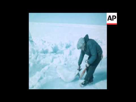 SYND 21/3/70 THE START OF THE ANNUAL SEAL HUNT WITH SEALS BEING CLUBBED TO DEATH AND SKINNED