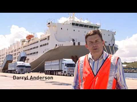 Livestock Transport: Take a ship tour onboard MV Becrux