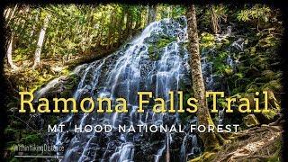 Hiking Ramona Falls Trail, Mt. Hood National Forest