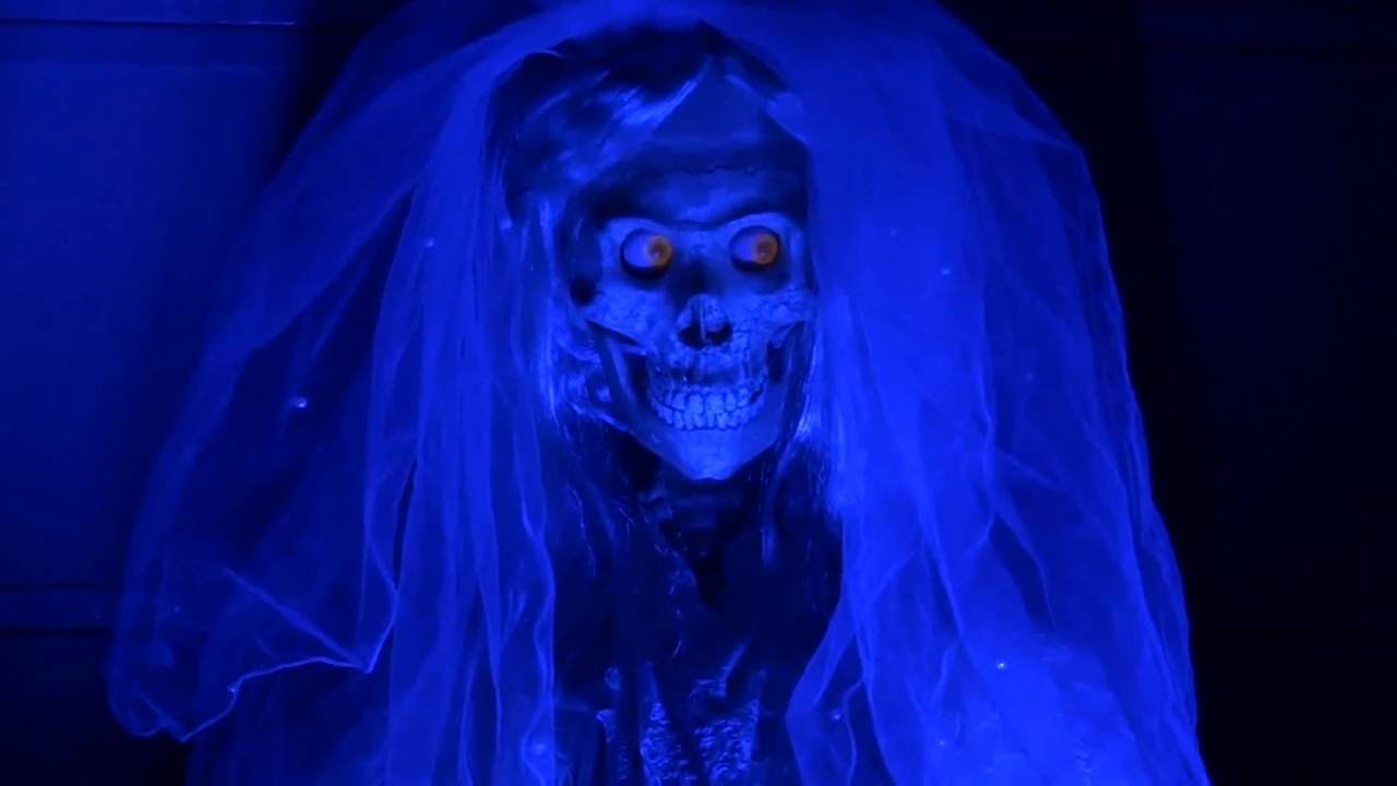 Haunted Mansion Ghost Bride