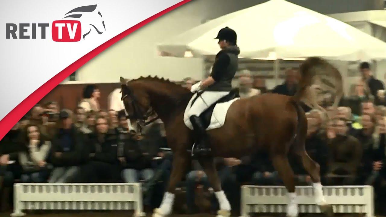 Kontrolle des Bewegungsablauf des Pferdes - Jean Bemelmans in ...
