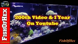 200th Video & 1 Year Anniversary On YouTube