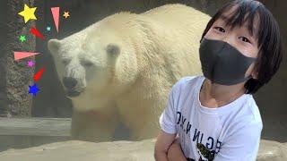 おでかけ 日本平動物園 いろいろなどうぶつさんを見に行こう! レオスマイル