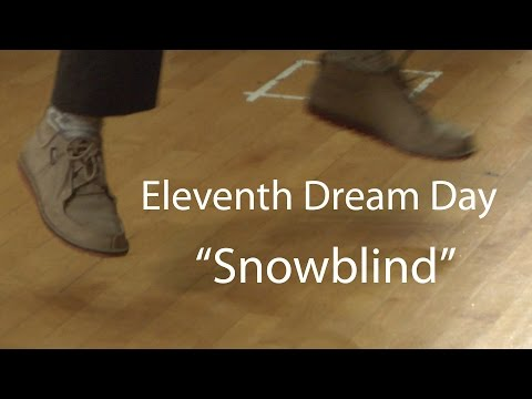 Eleventh Dream Day perform