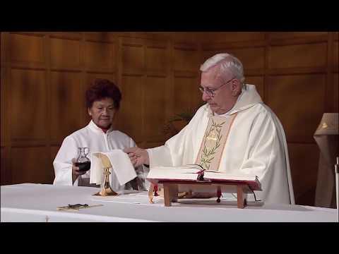Daily TV Mass Saturday November 11, 2017