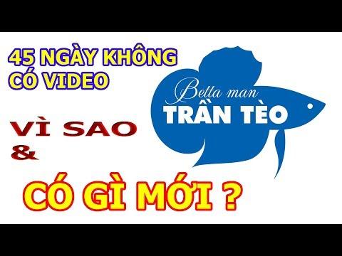 TRAN TEO CHANNEL CÓ GÌ MỚI SAU 45 NGÀY TẠM NGƯNG UP VIDEO ?