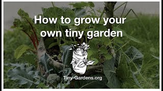 How To GROW Your Own Tiny Garden in a Burlap Sack
