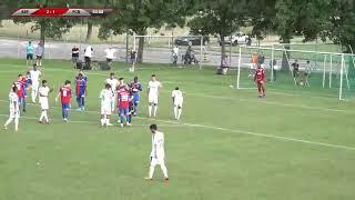 Palmeiras FC Sao Paulo  - FC Basel