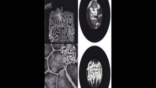 FAECES ERUPTION / URINE FESTIVAL split EP full