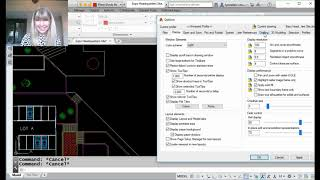 AutoCAD Video Tips: Manage All Those UI Boxes! (Lynn Allen/Cadalyst Magazine)