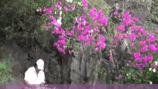 THUONG HOAI NGAN NAM Guitar Hawaii CAODZAN 02DVD47