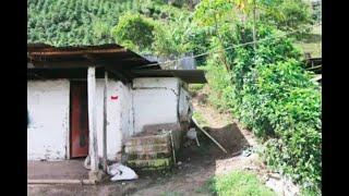 Menor indígena fue asesinada con más de 20 heridas de arma blanca