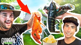 WILD vs. STOREBOUGHT Lobster Catch and Cook BLINDFOLD Tasting CHALLENGE!