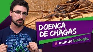 Скачать Doença De Chagas Mundo Biologia ENEM