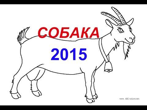 Восточный гороскоп на 2015 год для Собаки, гороскопы 2015