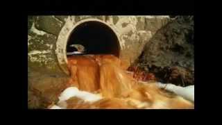 Прозрачное золото. Берегите воду!!!