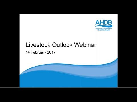 Livestock Outlook Webinar 2017