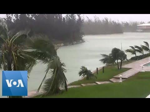 Hurricane Dorian Strong Waves Blow Trees in Bahamas