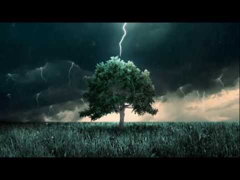 Song of the Tree - Modern Classical Music
