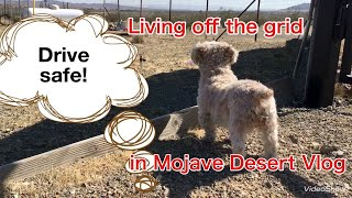 Living off the grid in Mojave desert vlog May 23.Drive safe,Man!