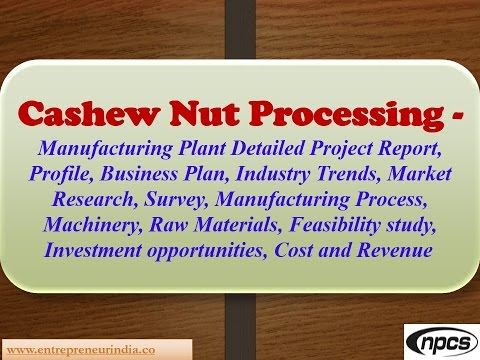 Cashew Nut Processing - Detailed Project Report, Market Research, Survey, Manufacturing Process