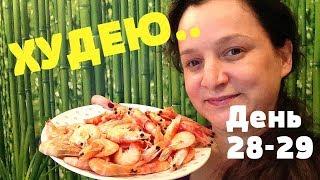 ПОХУДЕНИЕ ОНЛАЙН (день 28-29) : МУКБАНГ-УСТАЛА от ДИЕТЫ!!!