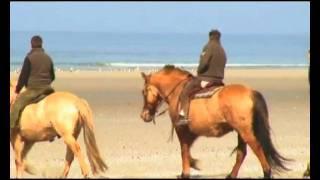 Extrait du clip Baie de Somme de Jacky Raison