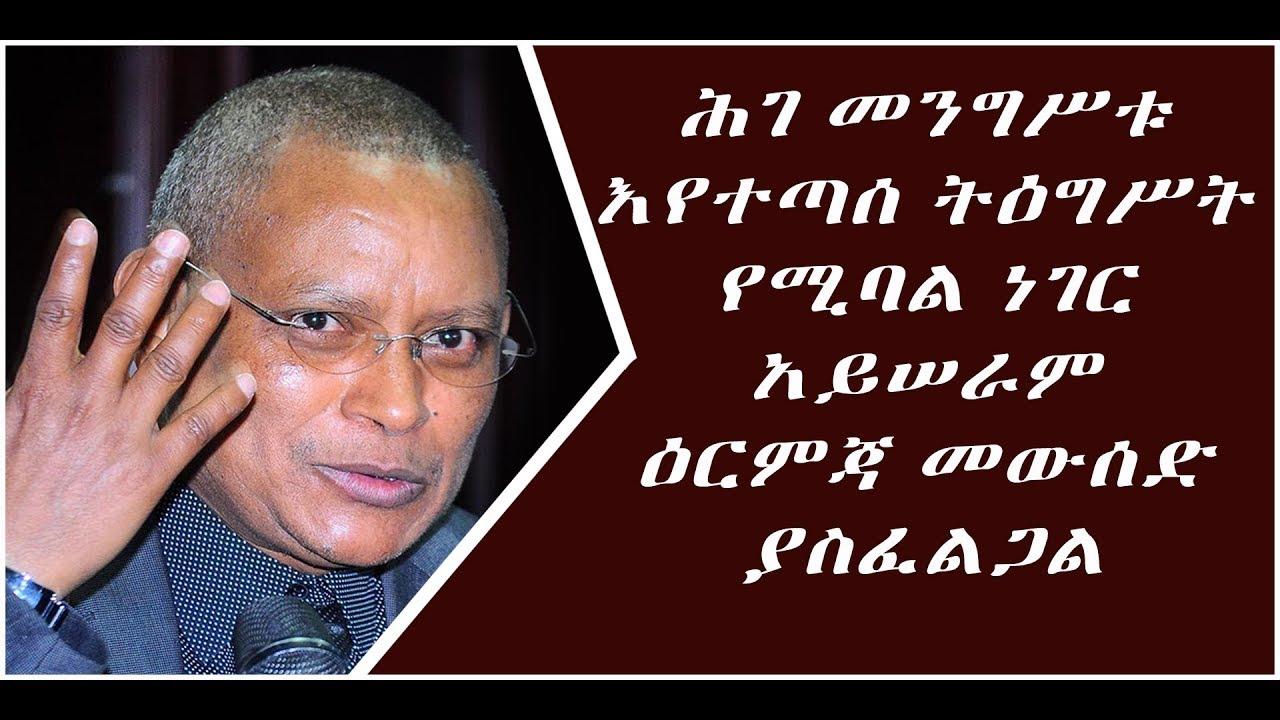 amharic news