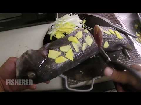 Catch And Cook Black Fish Aka Tautog