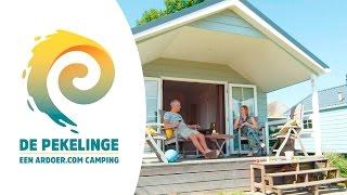 Lodge - Camping De Pekelinge