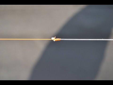 Jak łowić karpie - strzałówka