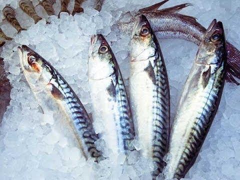 Suffolk Fresh Fish Van - Suffolk Escape Self Catering Holidays