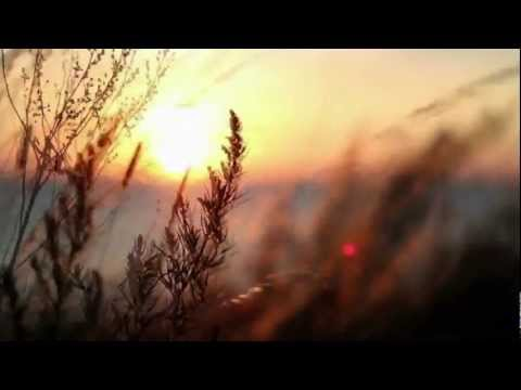 Sunset Melodies # 26 - Meets: Biotones - Progressive House