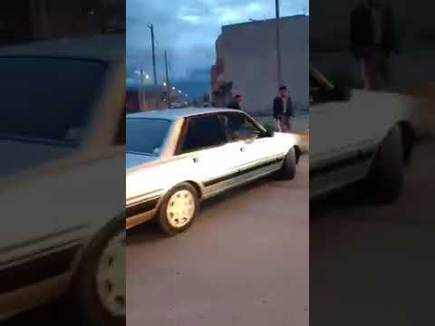 Peugeot 505 🔥🔥
