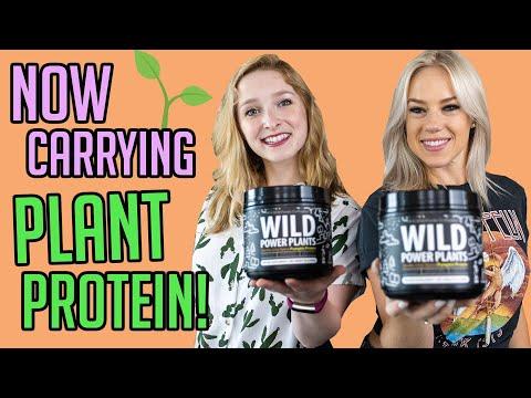new-plant-based-protein-powder-|-pumpkin-spice-vanilla-chai