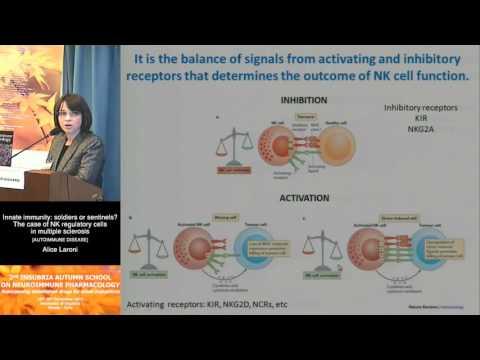 Innate immunity: soldiers or sentinels? NK cells in MS - Alice Laroni, University of Genoa