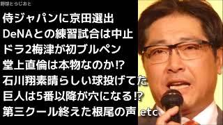 侍ジャパンに京田選出される、与田監督第三クール終了後総括、ドラ2梅...