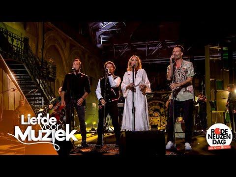 Liefde voor Muziek voor Rode Neuzen Dag - 'Porselein' | Liefde voor Muziek: De Reünie | VTM