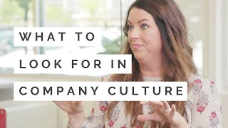 What to Look for in Company Culture