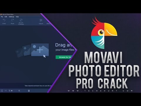 🔥Movavi Photo Editor 5.8.0🔥 + ключ (Полная версия)🔥