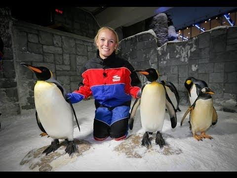 Caroline Wozniacki at Ski Dubai | Full of Surprises Travel Show presented by Dubai Duty Free
