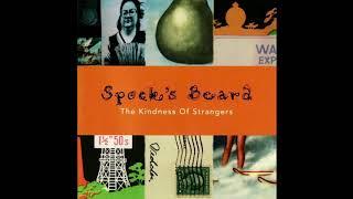 Spock's Beard - Kindness of Strangers (Full Album)