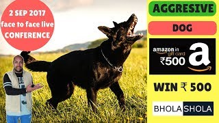 Pet Care - Why My Dog is Aggressive, Irritated, Attacking  - Bhola Shola - Harwinder Singh Grewal