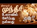 Cashew Nuts - Amazing Health Benefits Of Cashew Nuts (Kaju)