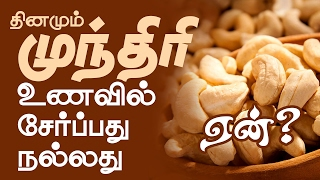 Benefits of Cashew Nuts in Daily Diet