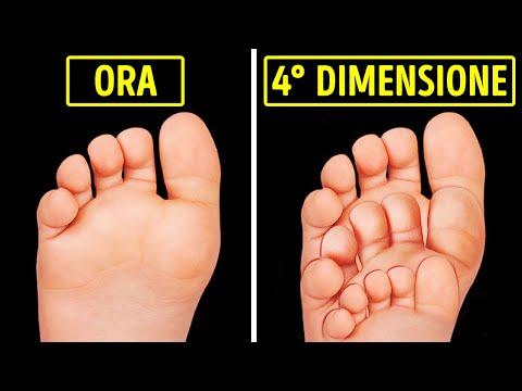 Come Appariresti nella 4° Dimensione