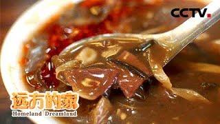 《远方的家》 家乡的味道 华中的火辣滋味:品味有胡有麻有辣的地道河南胡辣汤 20190131 | CCTV中文国际