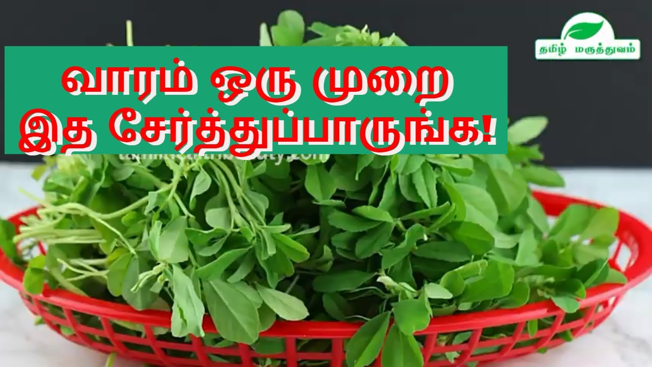 Fenugreek Leaves as Stomach disorder home remedy  Fenugreek leaves benefits  in Tamil by Tamil Maruthuvam